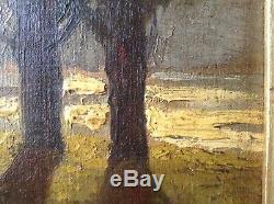 Tableau Ancien Impressionniste Paysage Couché de Soleil Berge du Rhône Huile