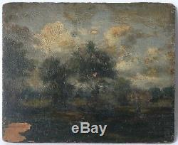 Tableau Peinture Ancienne Huile, Paysage, Barbizon, Forêt, Arbre