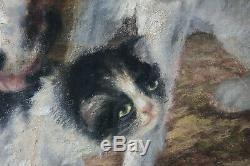 Tableau ancien HST Chien avec chaton Sophie PIR (1858-1936) Ecole belge