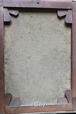 Tableau ancien Perroquet Anonyme Superbe